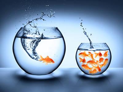 Ook in de wereld van goed doen geldt: niets is, alles wordt....