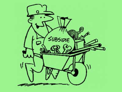 Mogelijk minder administratieve rompslomp als erkende instellingen subsidie gaan aanvragen